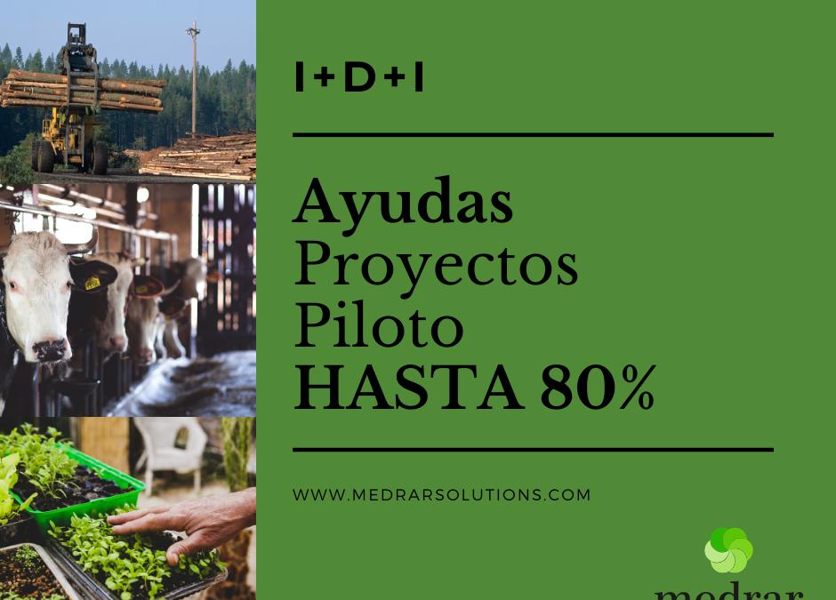 Ayudas Galicia I+D+I, Agacal procedimiento Xunta de Galicia: MR331A – Acciones de cooperación para el apoyo de proyectos piloto para el desarrollo de nuevos productos, prácticas, procesos y tecnologías en el ámbito agroforestal.